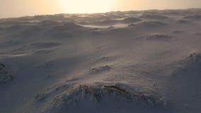 Сюрреалистический ландшафт покрытого снегом наклона горы с солнцем излучая оранжевое зарево и зеленый мох показывая до конца в Шо сток-видео