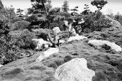 Сюрреалистический взгляд в саде 2 японского стиля Стоковая Фотография