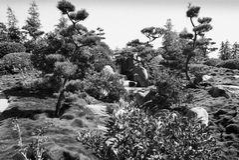 Сюрреалистический взгляд в саде японского стиля Стоковые Фотографии RF