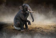 Сюрреалистический слон думает, идеи, нововведение стоковые фото