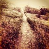 Сюрреалистический grungy холм горы ландшафта с следом и небом Стоковое Изображение RF