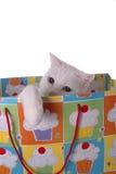 сярприз дня рождения Стоковая Фотография RF