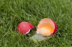 сярприз пасхального яйца Стоковые Фотографии RF