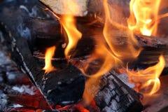 ся пуща пламени пожара Стоковая Фотография RF