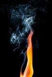 ся пуща пламени пожара Стоковая Фотография