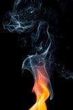 ся пуща пламени пожара Стоковые Изображения