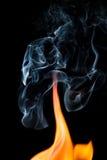 ся пуща пламени пожара Стоковое Фото