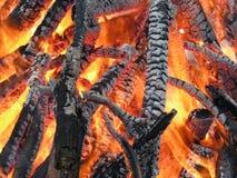 ся пуща пламени пожара Стоковое Изображение