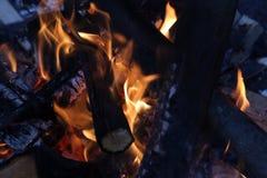 ся пуща пламени пожара Стоковые Изображения RF