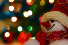 ся снеговик Стоковые Изображения