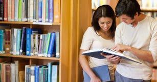 Ся студенты смотря книгу стоковое изображение rf