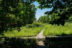 Слабый unpaved перекрестный путь в солнечном лете Стоковая Фотография