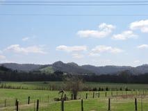 Славная ферма с лошадями на солнечный день Стоковые Фото