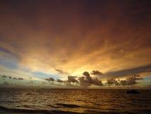 Славное золотое небо Стоковые Фотографии RF
