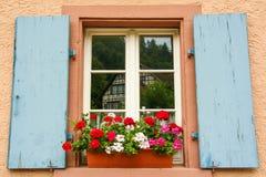 Славное окно с синью закрывает на розовой стене Стоковое Изображение RF