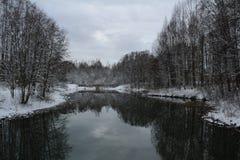Славное winterday Стоковое Изображение