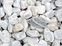 Славные камни моря как предпосылка или картина Стоковое Изображение