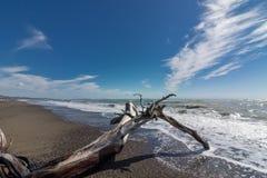 Славный ландшафт моря Стоковое Фото