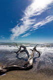 Славный ландшафт моря Стоковое фото RF