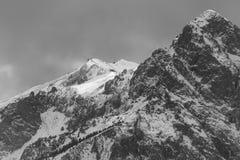 Славный взгляд зимы стоковая фотография rf