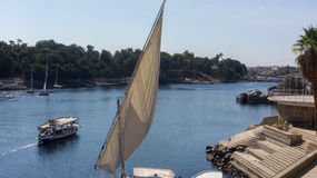 Славный взгляд к Нилу Стоковые Фото