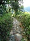 Славный путь над холмом Стоковые Изображения
