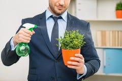 Славный работник офиса позаботить о цветочный горшок Стоковые Изображения