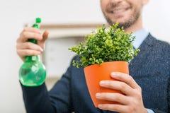 Славный работник офиса позаботить о цветочный горшок Стоковая Фотография RF