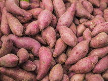 Сладкий картофель - азиатский овощ Стоковая Фотография