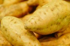 Сладкий картофель, произведенный в провинции Цзянси Китая Стоковое фото RF