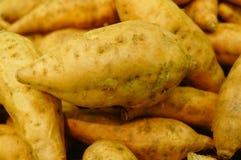 Сладкий картофель, произведенный в провинции Цзянси Китая Стоковая Фотография RF