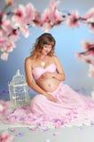 Сладостная беременность Стоковая Фотография RF