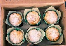 Сладостная коробка с 6 свежими испеченными булочками Стоковая Фотография RF