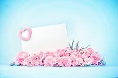 сладостная пастель красивой зацветая гвоздики цветет с пустой Стоковая Фотография RF