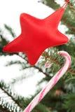 Сладостная ручка и красная смертная казнь через повешение звезды на дереве. Стоковые Фотографии RF