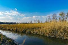Сладостное река Стоковая Фотография