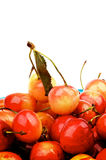 Сладостные вишни Стоковое фото RF