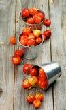 Сладостные вишни Maraschino Стоковое Фото