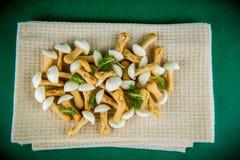Сладостные грибы Стоковые Изображения