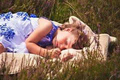 Сладостные мечты в поле вереска Стоковое Изображение