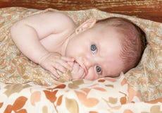 Сладостные мечты маленького ребёнка стоковое фото rf