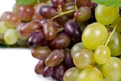 Сладостные свежие зеленые виноградины стоковая фотография