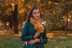 Сладостные стойки девушки в парке осени смотрят Afar и держат листья в руке Стоковые Изображения RF
