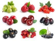 Сладостные ягоды Стоковые Фотографии RF
