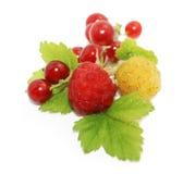 Сладостные ягоды Стоковое Фото