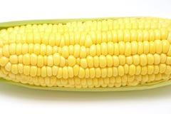 Сладостные Corns изолированные на белой предпосылке Стоковые Изображения RF