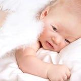 Сладостный младенец ангела Стоковая Фотография