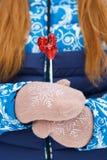 Сладостный петушок на ручке в руках  Стоковая Фотография RF