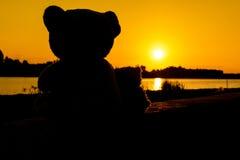 Сладостный сидеть плюшевого медвежонка влюбленности Стоковые Изображения