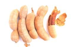 Сладостный тамаринд стоковая фотография